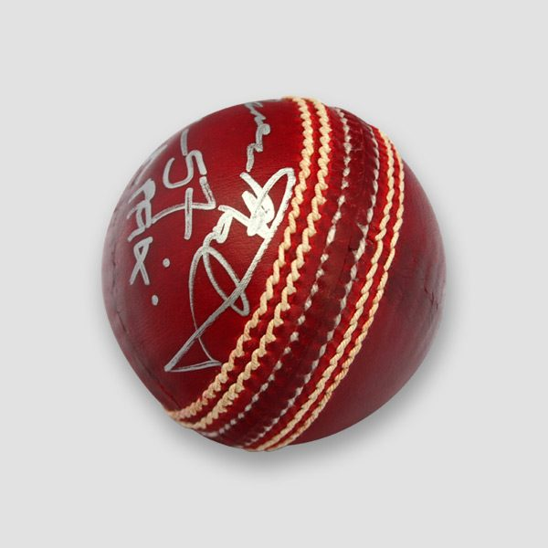 Cricket-Ball-2