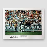Gordon-Banks-1970-England-v-Brazil-World-cup-finals-Worlds-greatest-save